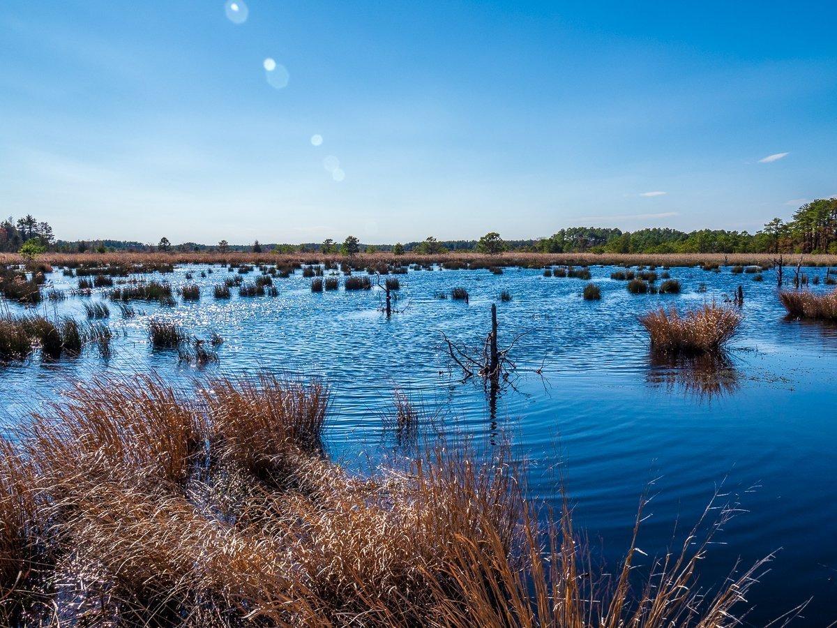 franklin-parker-preserve-4160034